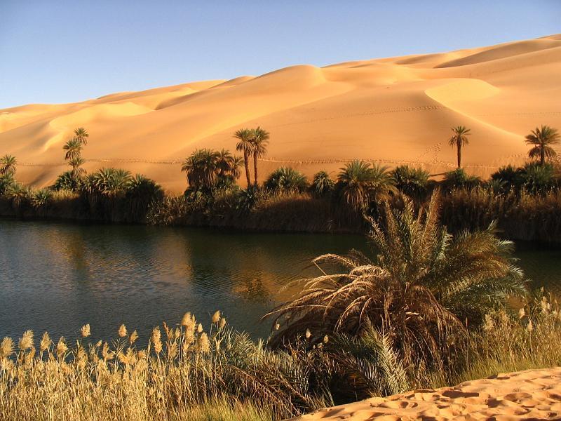 Libyan-desert-Oasis.jpg